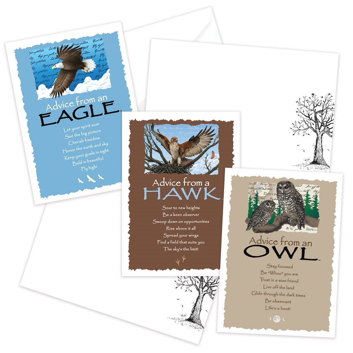 Advice from the Eagle, Hawk and Owl Greeting Cards