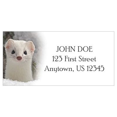 Ermine in Winter Coat Address Labels