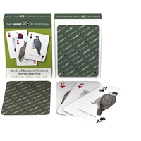 Birds of Eastern and Central North America Playing Cards