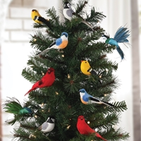 Songbird Clip Ornament Set