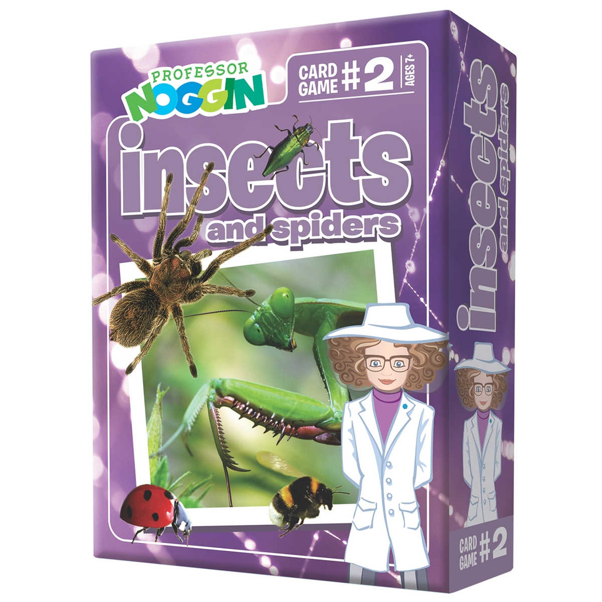 Professor Noggin - Insects and Spiders