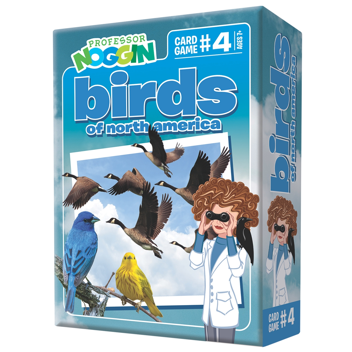 Professor Noggin - Birds of North America