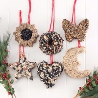 Bird Seed Ornament Set