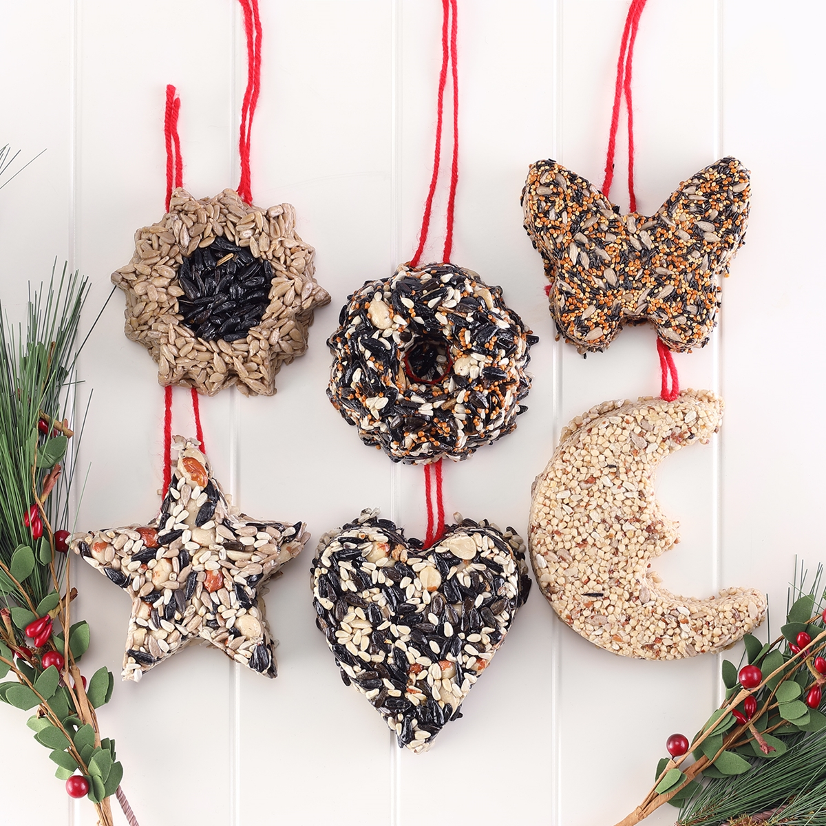 Bird Seed Ornament Set
