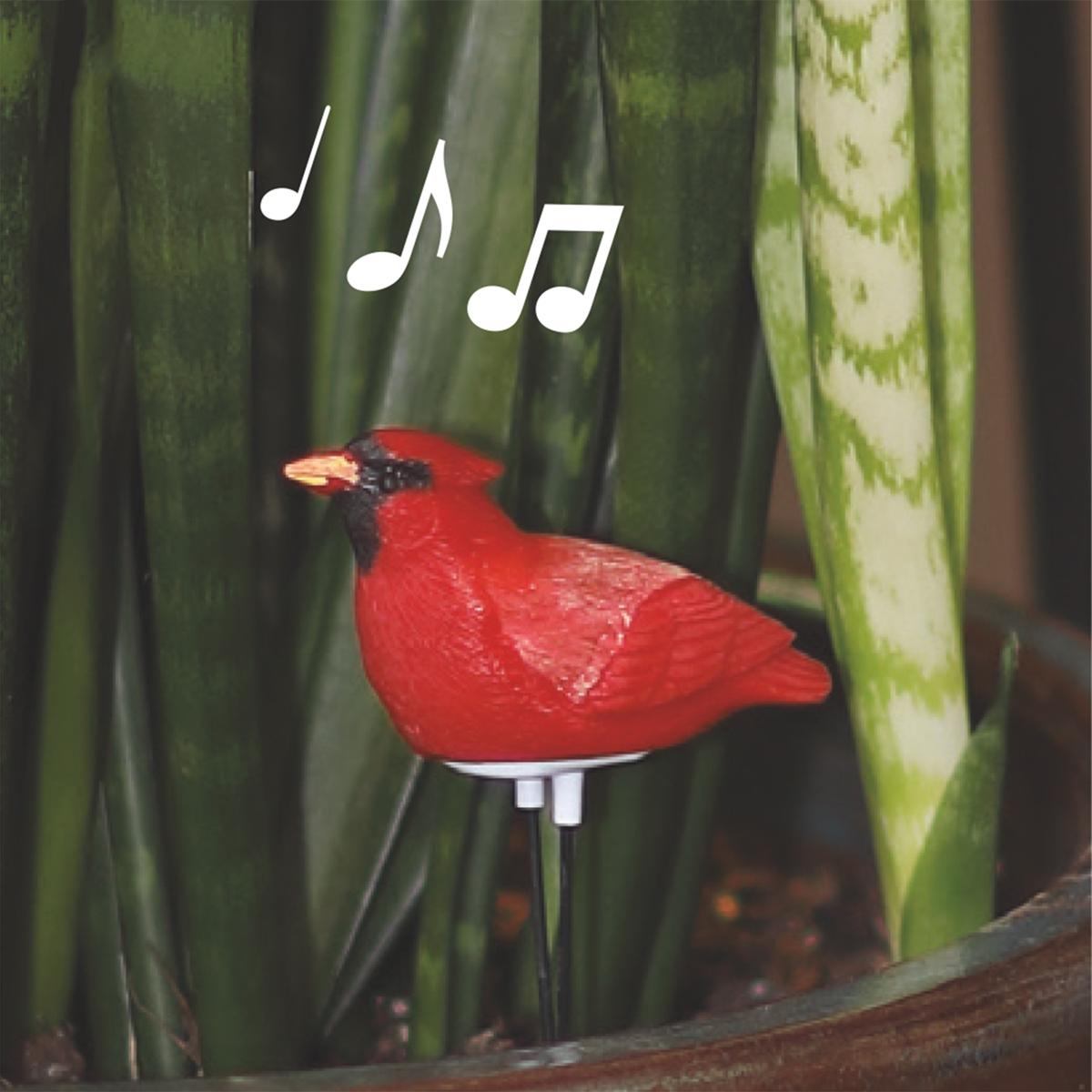 Cardinal Moisture Meter