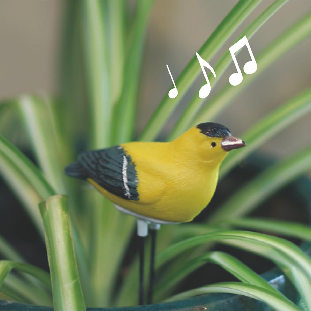 Goldfinch Moisture Meter