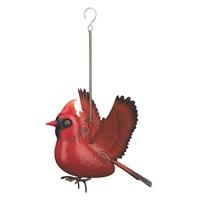 Cardinal Bird Bounce