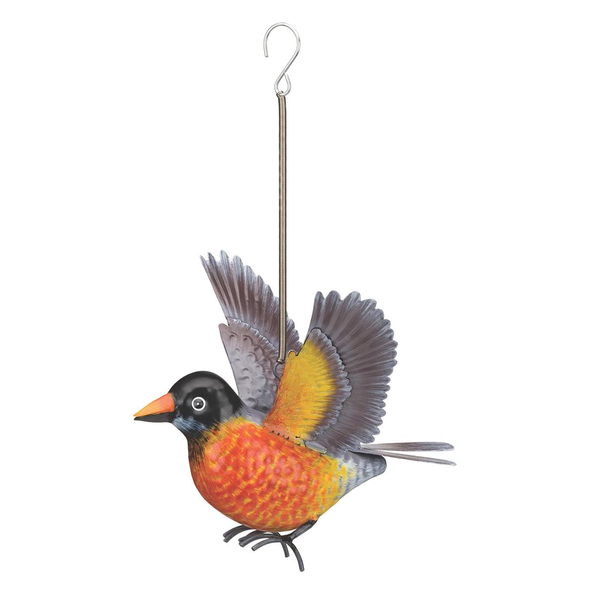 Robin Bird Bounce