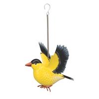 Goldfinch Bird Bounce