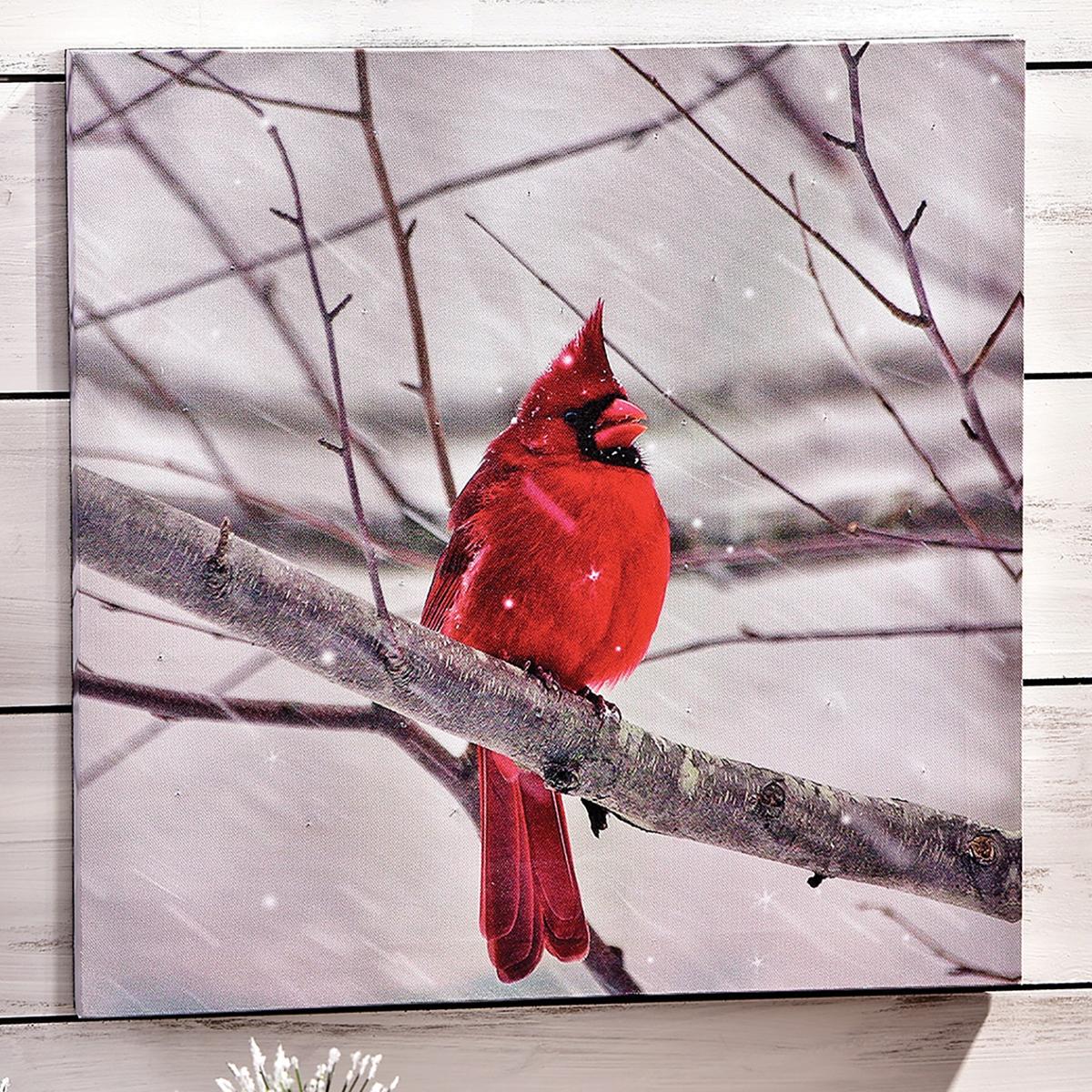 LED Lighted Cardinal Canvas