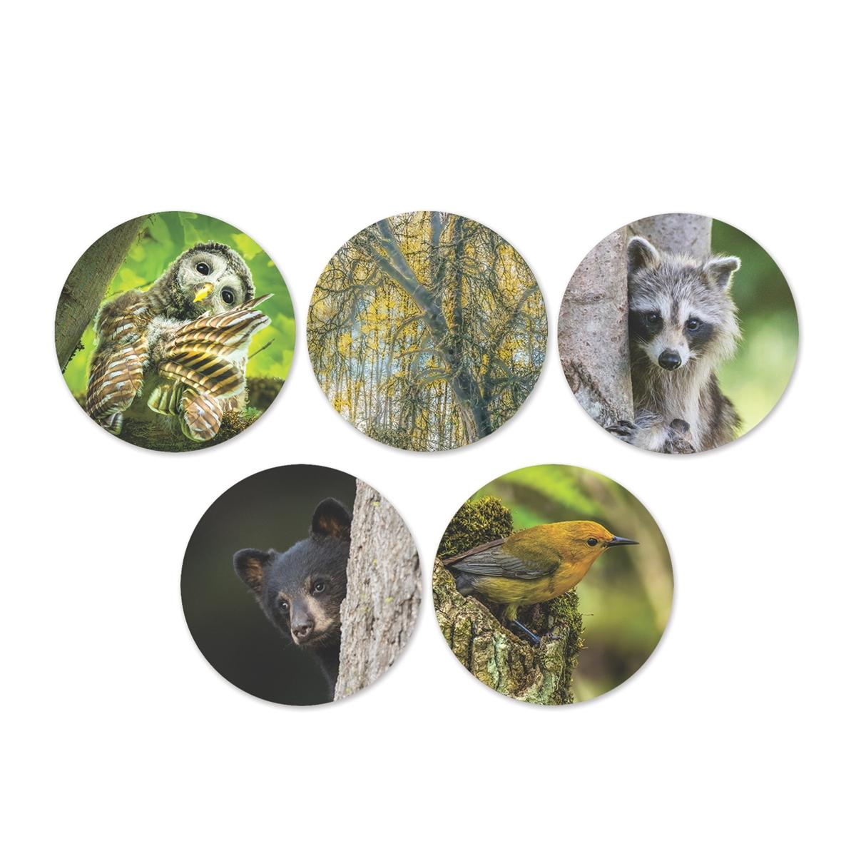 Trees for Wildlife Envelope Seals