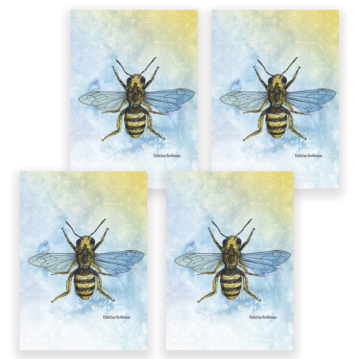 Bee Card Set