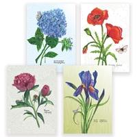 Botanical Assortment Card Set