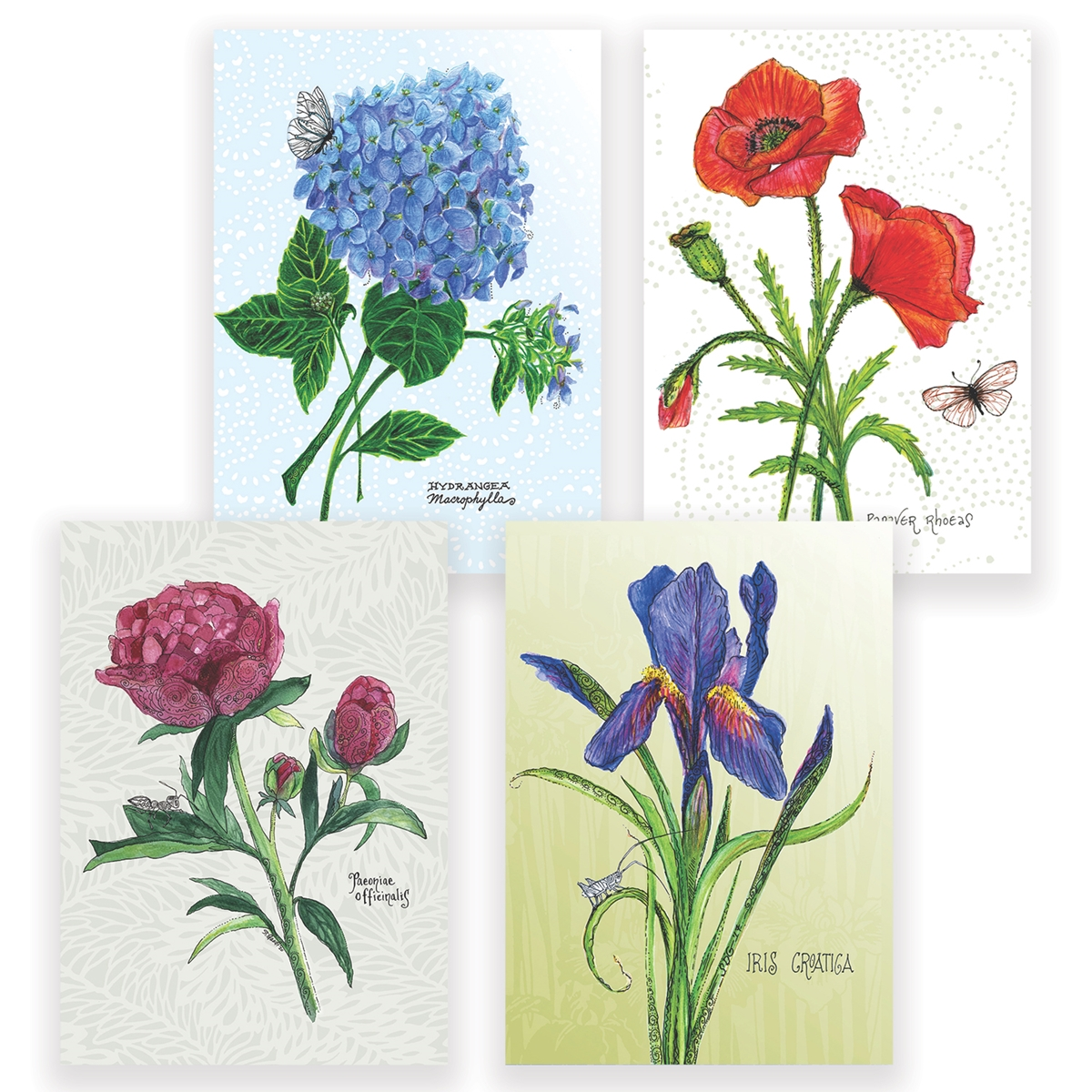 Botanical Assortment Card Set