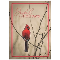 Cardinal in Winter Card