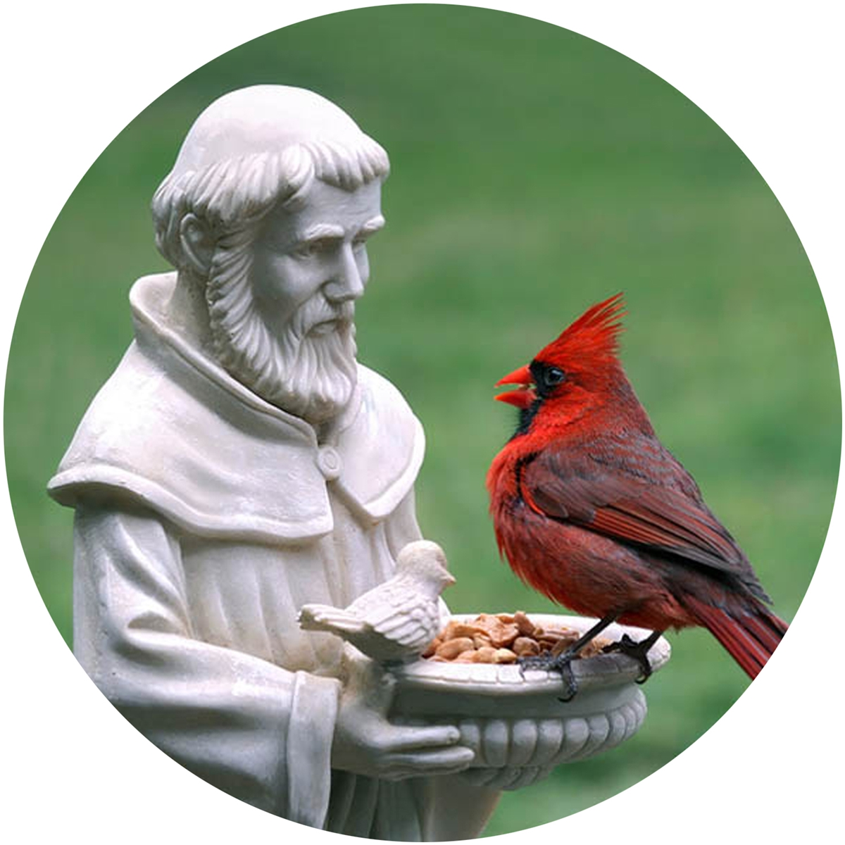 St. Francis and The Cardinal Envelope Seals