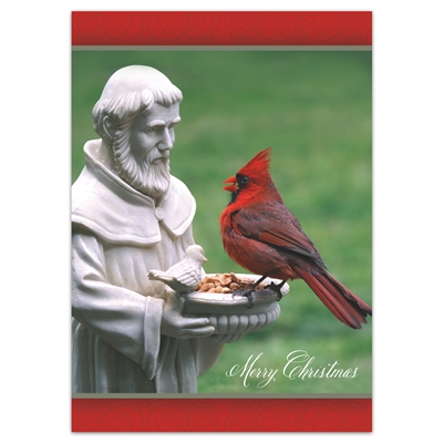 St. Francis and the Cardinal Holiday Cards