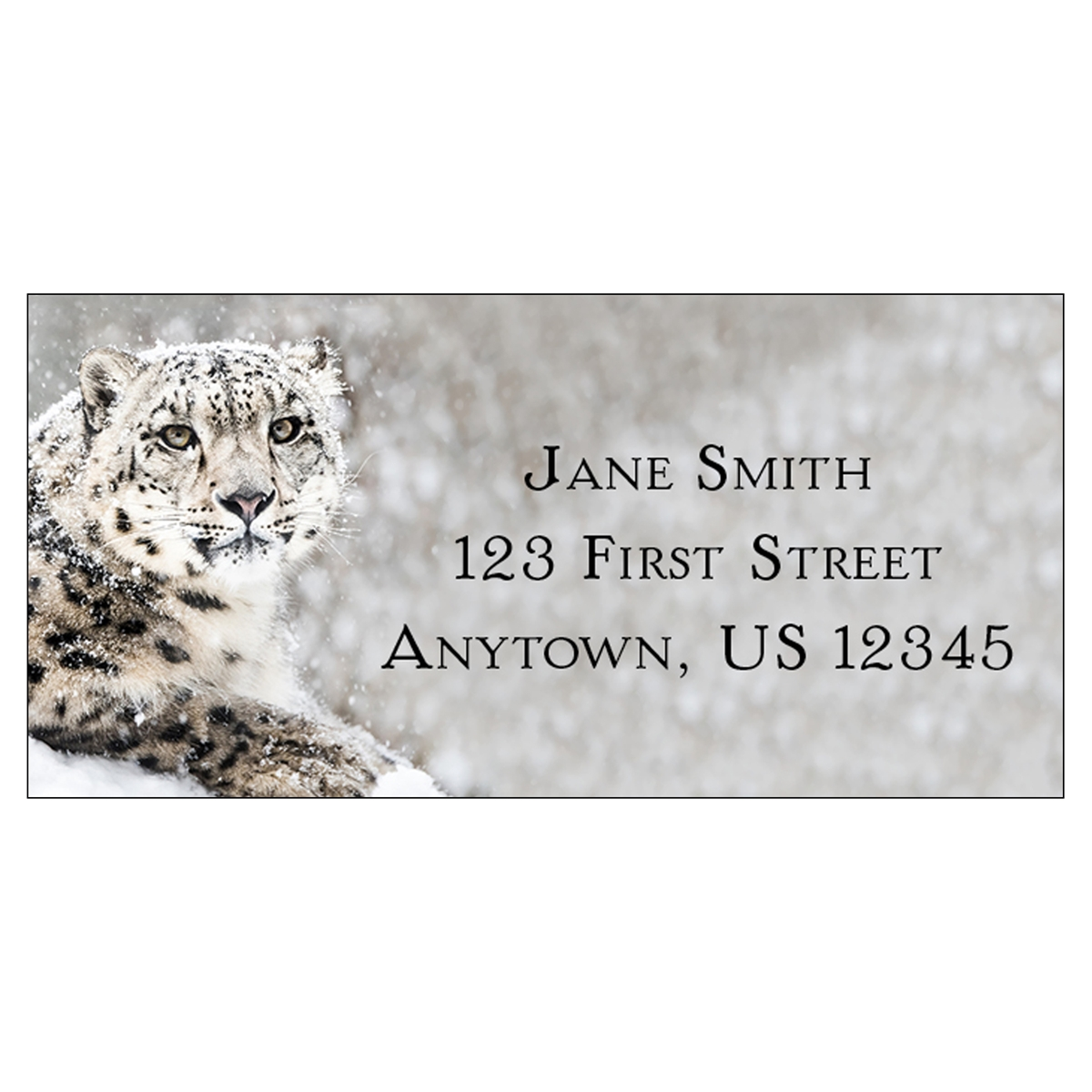 Snow Leopard Address Label