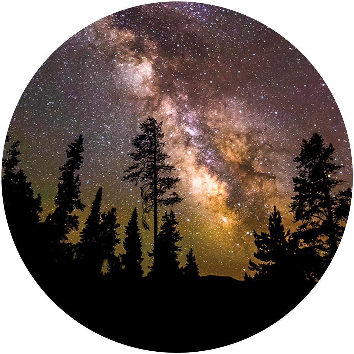 Milky Way Over Trees Envelope Seal