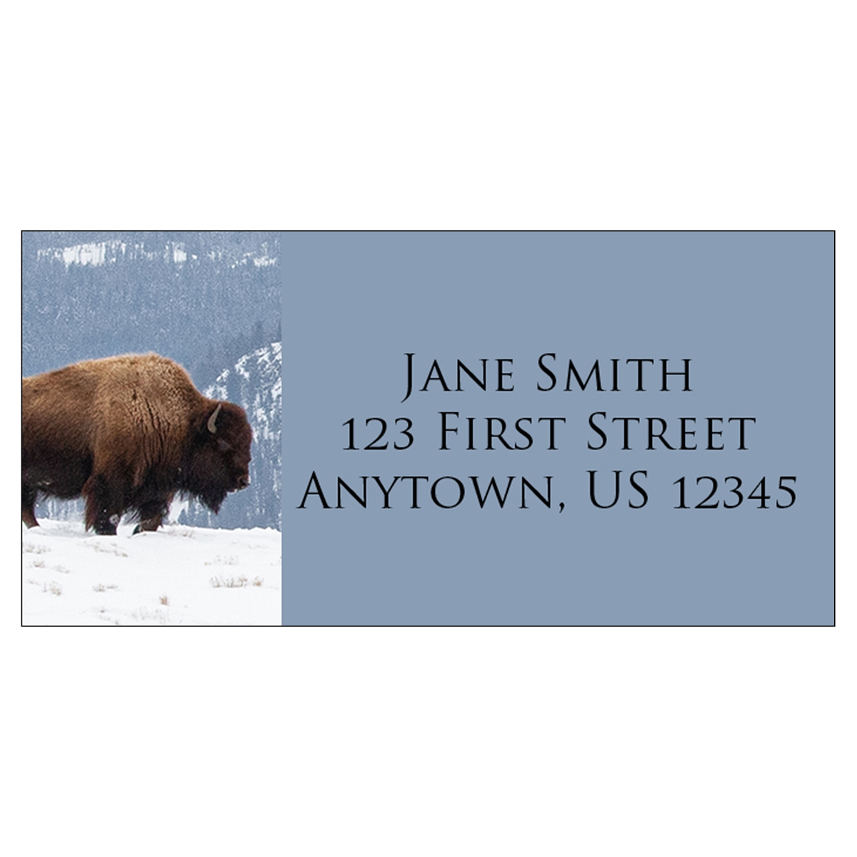 Bison in the Snow Address Label