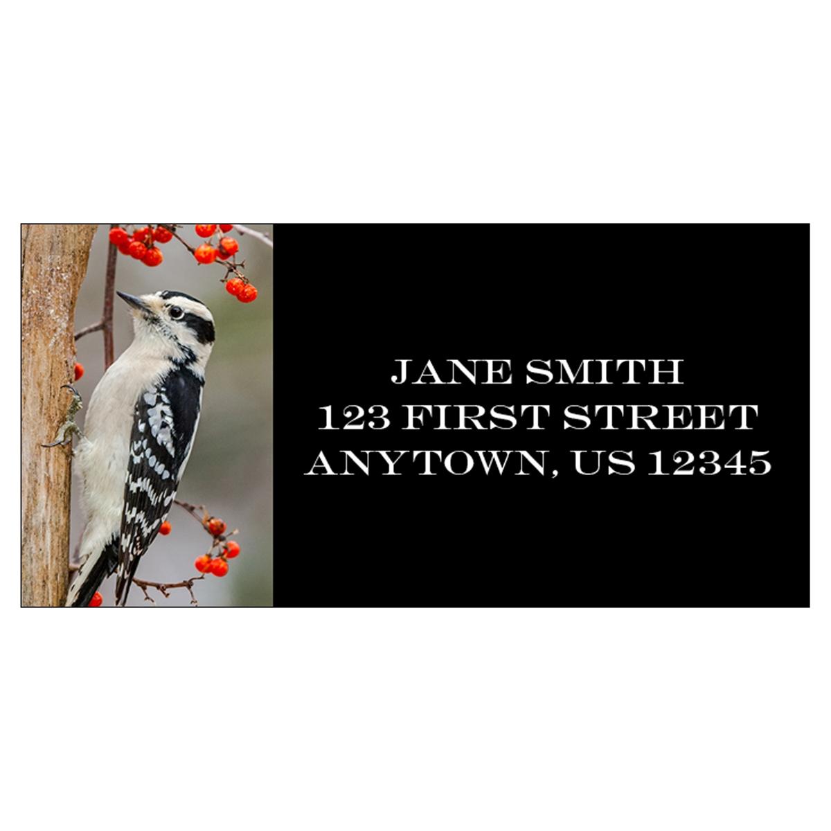 Downy Woodpecker Address Label