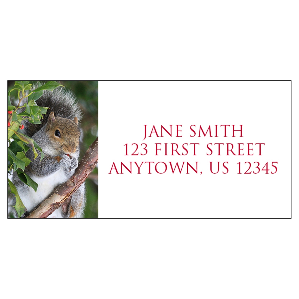 Squirrel in Holly Address Label