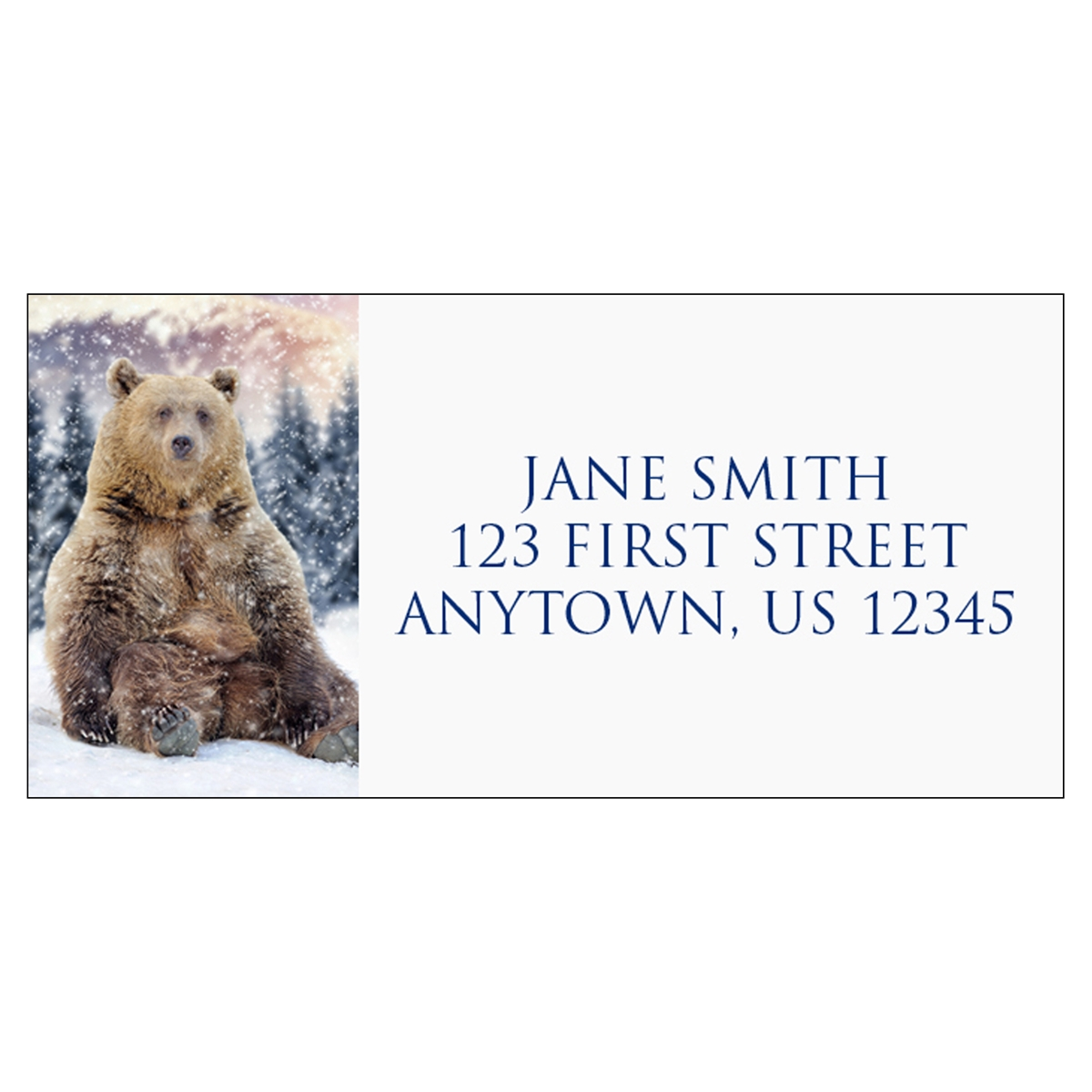 Winter Time Bear Address Label