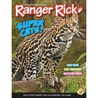 Ranger Rick 1 year Subscription