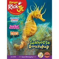 Ranger Rick Junior 1 Year Subscription