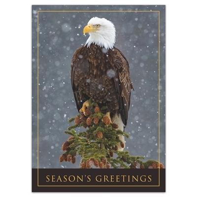 Peaceful Eagle Holiday Cards