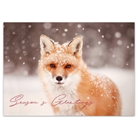 Red Fox in Falling Snow Holiday Cards