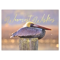 Resting Pelican Holiday Cards