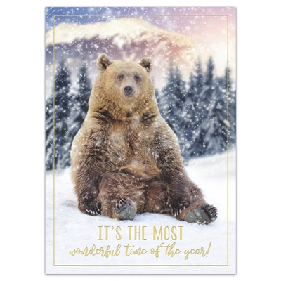 Winter Time Bear Holiday Cards