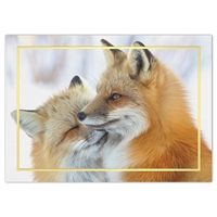 Cuddling Foxes Holiday Cards