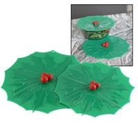 Holly Reusable Lid Set