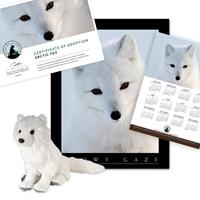 Adopt a Arctic Fox