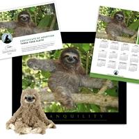 Adopt a Three Toed-Sloth