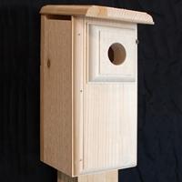 Eastern Bluebird Nesting Box
