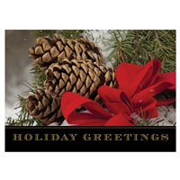 Pine Cone Greetings Card