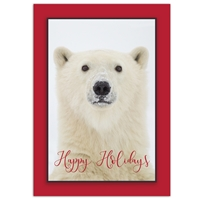 Yearling Polar Bear Card