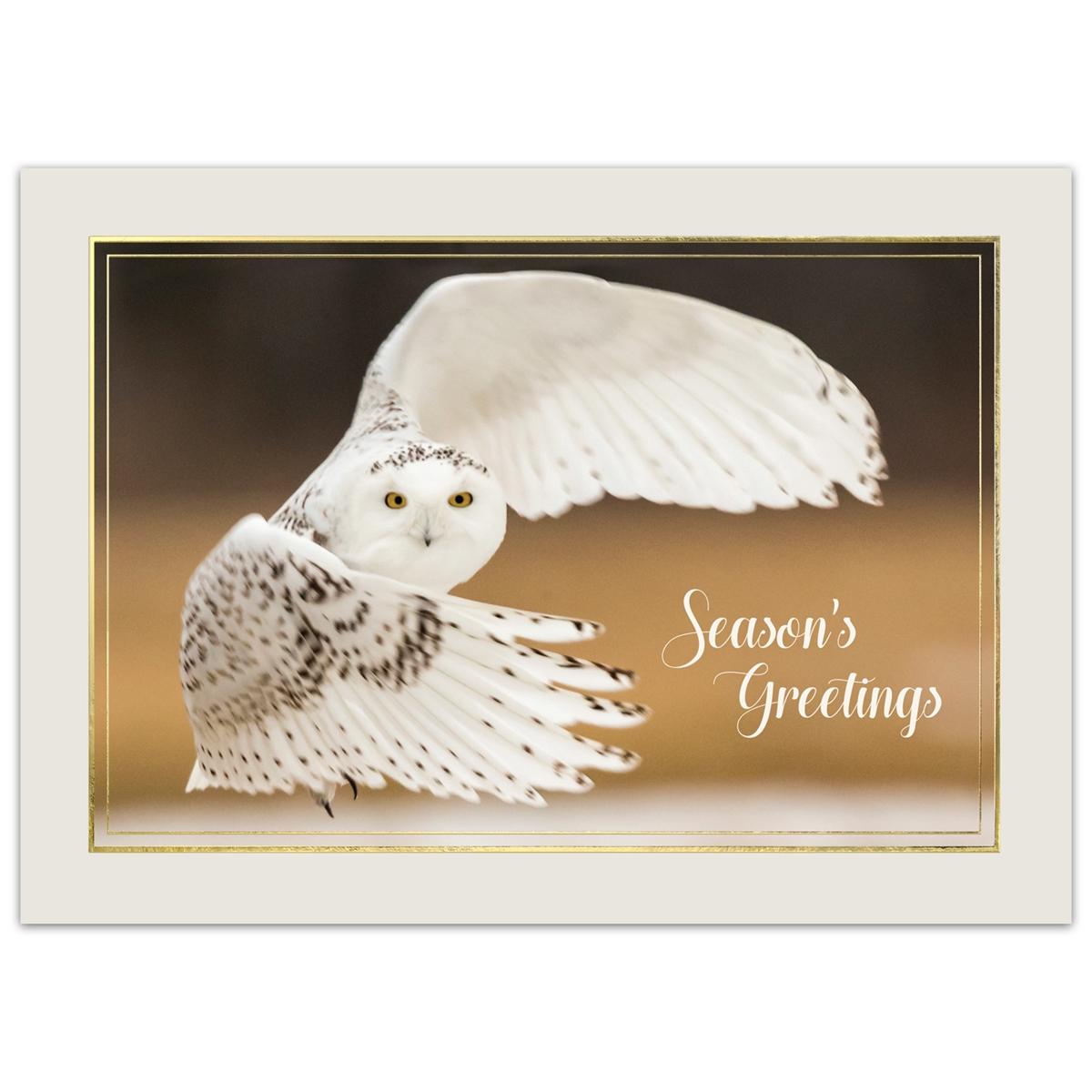 Snowy Owl Chasing Prey Card