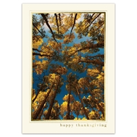 Roof of Aspens Card