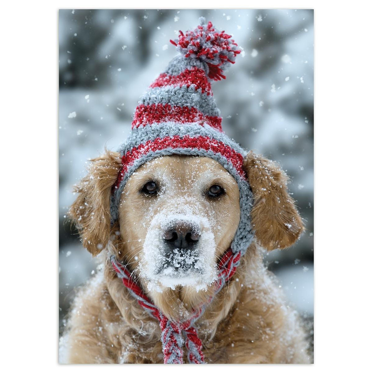 Frosty Retriever Card