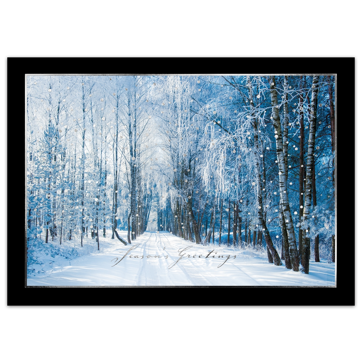 Snowy Tree Lined Road Card