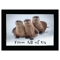 River Otters Along the Shoshone River Card