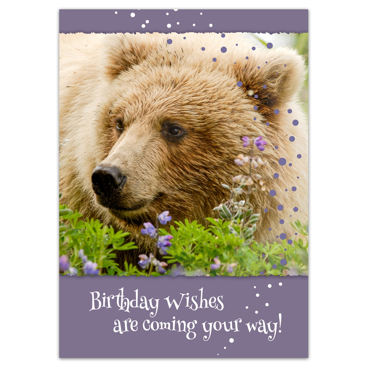 Brown Bear Cub Birthday Card