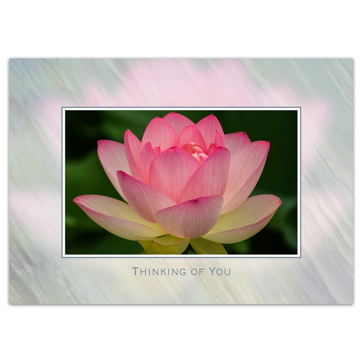 Sacred Lotus Flower Thinking of You Card