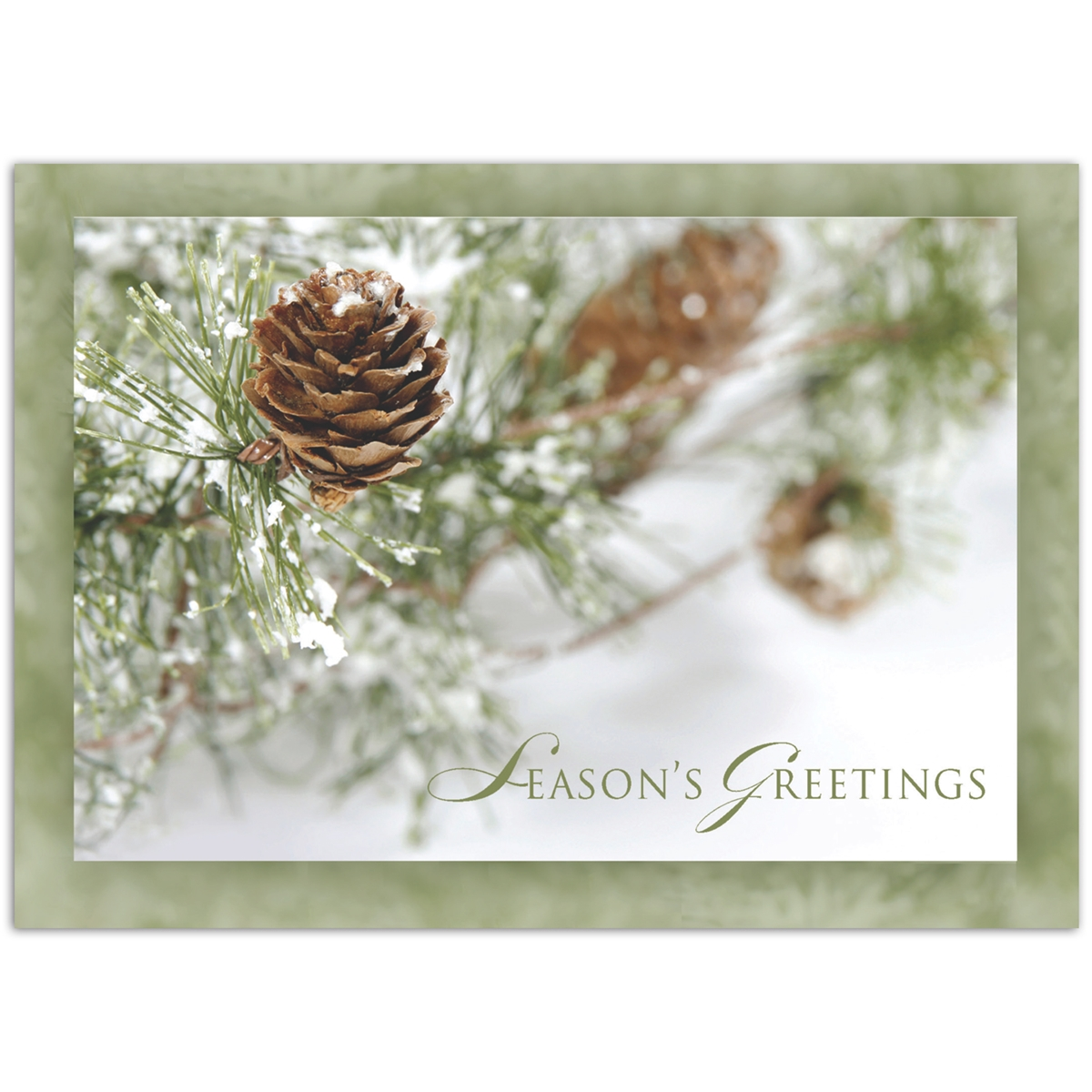 Frosty Pinecones Holiday Cards