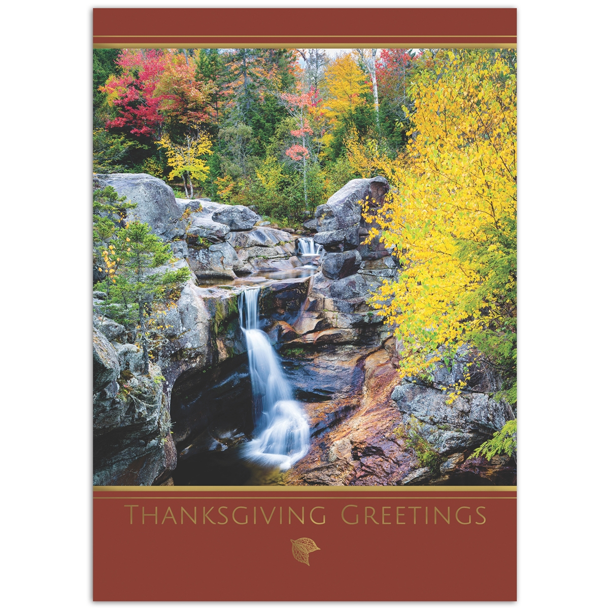 Screw Auger Falls Card