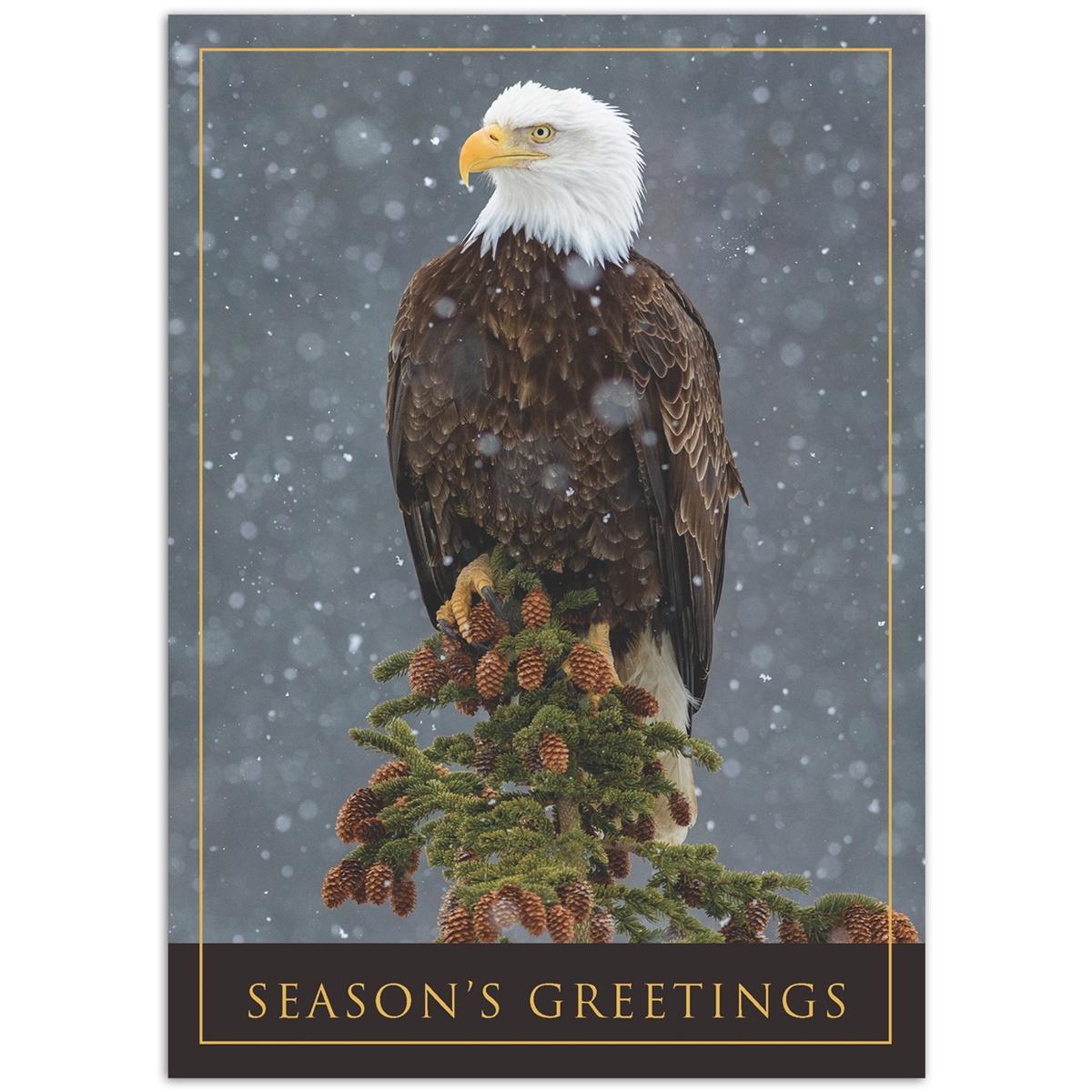 Peaceful Eagle Card
